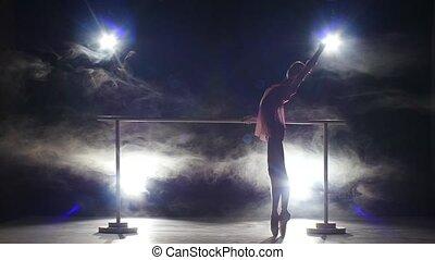 ballerina dancer near the barre. smoke