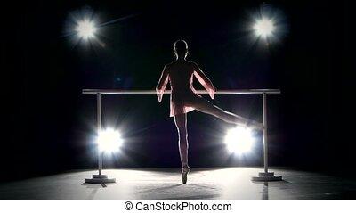 ballerina in the ballet hall on the dance floor. little...