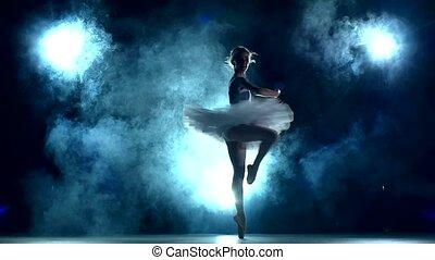 ballerina:, mouvement, séance entraînement, lent, classe