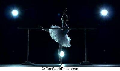 ballerina standing near a in a dance class