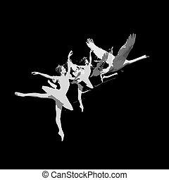 Ballerina turns into a swan