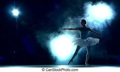 ballerina: workout in the classroom, slow motion - graceful...