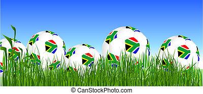 balles, tasse, afrique, mondiale, herbe, sud