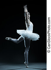 Ballet dancer and stage shows