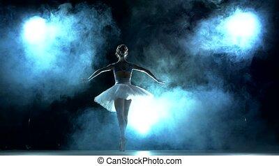 ballet dancer in white tutu on a Blue, Smoke, fog - classic...