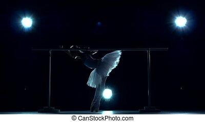 ballet dancer in white tutu posing on ballet barre - classic...