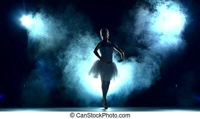 ballet dancer in white tutu, Smoke, fog, slow motion -...