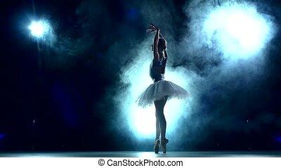 ballet, lent, danseur, mouvement, fond, poser, studio