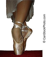 Ballet Slippers - Ballerina's Legs - Standing Still