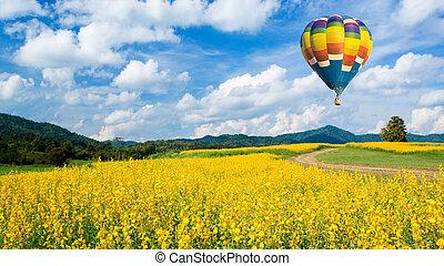 ballon air chaud, sur, fleur jaune, champs, contre, ciel bleu