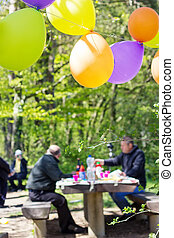 ballons hanging in front of the forest and birthday party