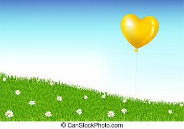 balloon, 上面, 草, 小山, 由于, camomiles