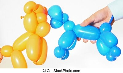 balloon dogs in young human hands white background
