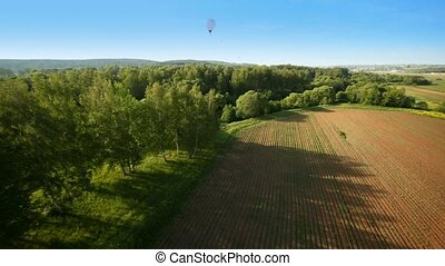 Balloons fly over wood and field against blue sky and sun