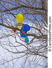 Balloons in a tree.