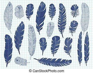Ballpoint pen drawing bird feathers big set on notebook background