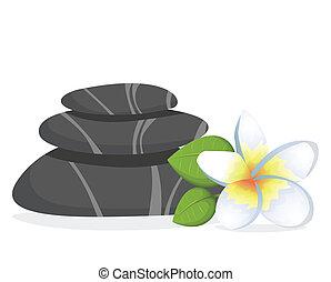 balneario, piedras, con, flor