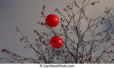 balony, wiatr