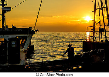 baltic, 上に, 日没, 海