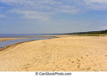 Baltic sea coast.