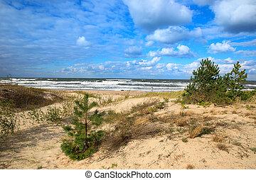 Baltic sea sand dunes and white clouds, Baltic coast Poland.