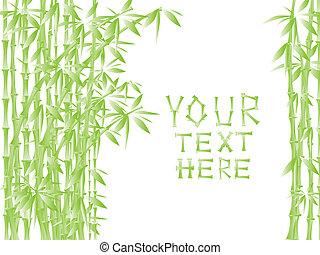 bambù, verde, illustrazione