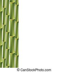 bambù, verde, seamless, fondo