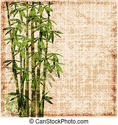 bambú, andrajoso, plano de fondo