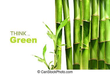 bambú, apilado, retoños, lado