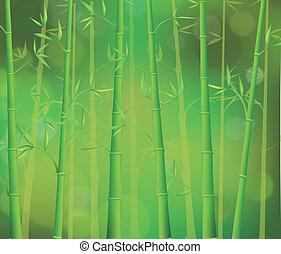 bambú, bosque verde