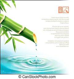 bambú, fountain., vector, ilustración, eps10.