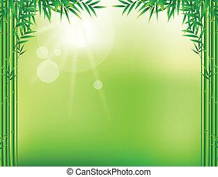 bambú, hoja, marco