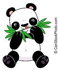 bambú, panda, come