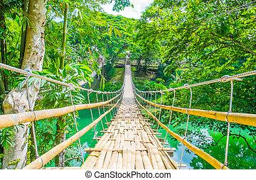 bambú, peatón, puente colgante, encima, río