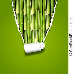 bambú, plano de fondo, con, rasgado, paper., vector,...
