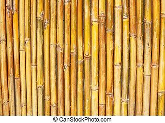 bambú, plano de fondo, textura, cerca