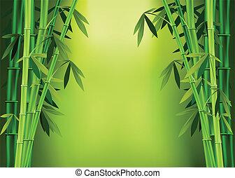 bambú, tallos