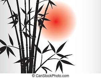 bambú, vector, plano de fondo, sol