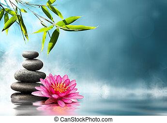 bambú, waterlily, piedras