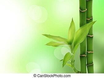 bambú, zen