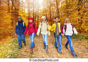 bambini, foglie, giallo, passeggiata, foresta, acero, mazzo