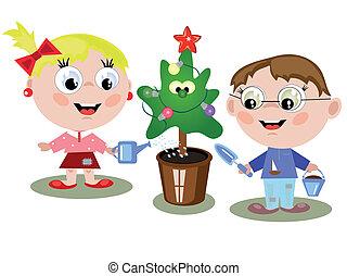 bambini, irrigazione, abete