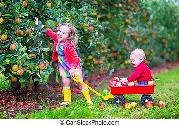 bambini, mela, giardino, gioco