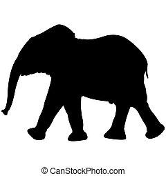 bambino, bianco, silhouette, isolato, elefante