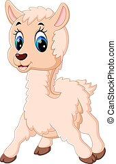 bambino, carino, cartone animato, sheep