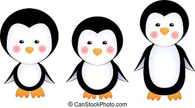 bambino, carino, pinguini