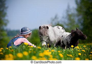 bambino, con, cavalli, in, campo