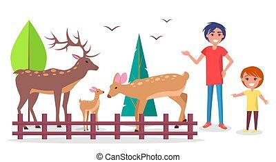 bambino, con, genitore, a, zoo, appresso, deers, famiglia, recinto per bestiame