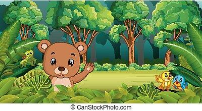 orso foresta datazione
