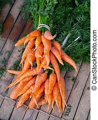 bambino, fresco, carote, mazzo